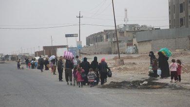 Photo of العراق.. عودة 100 أسرة نازحة إلى منازلها في كركوك