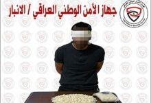 Photo of الأمن الوطني يُطيح بأحد تجار المخدرات ويضبط بحوزته (4000) حبة مخدرة في الأنبار